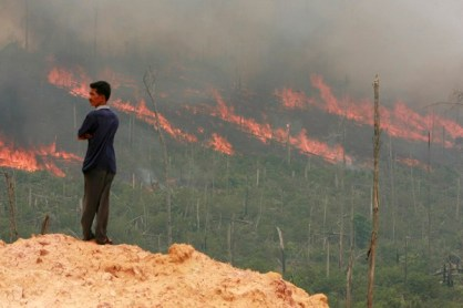 Man stands in front of a forest fire in Pelalawan, in the Indonesian province of Riau